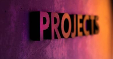 Projektmanagement (1)
